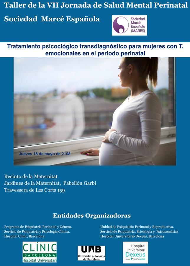 Taller: Tratamiento psicológico transdiagnóstico para mujeres con T. emocionales en el periodo perinatal